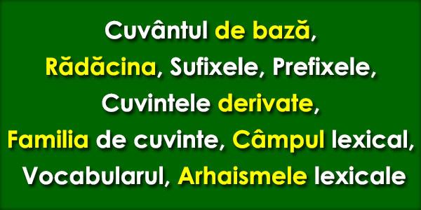 Cuvântul de bază, Rădăcina, Sufixele, Prefixele, Cuvintele derivate, Familia de cuvinte, Câmpul lexical, Vocabularul, Arhaismele lexicale