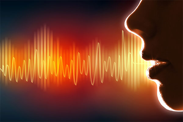 Elemente de limbaj muzical
