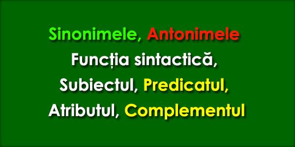 Sinonimele, Antonimele, Funcţia sintactică, Subiectul, Predicatul, Atributul, Complementul