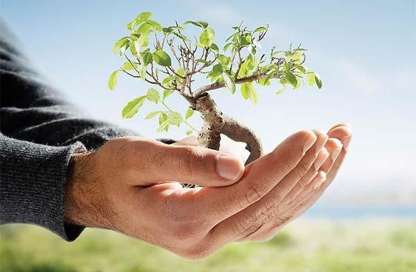 Conservarea mediului