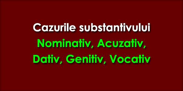 Cazurile substantivului