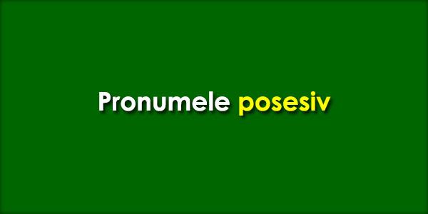 Pronumele-posesiv