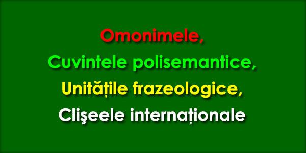 Omonimele, Cuvintele polisemantice, Unităţile frazeologice, Clişeele internaţionale