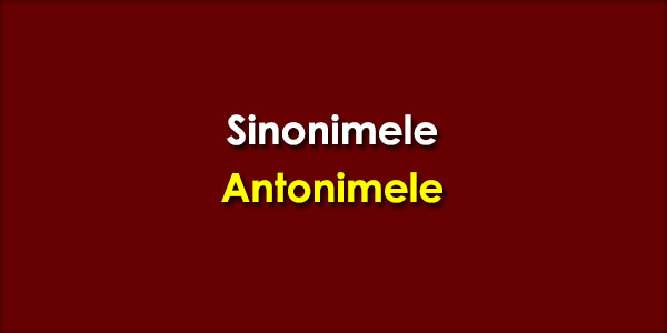 Sinonimele-Antonimele