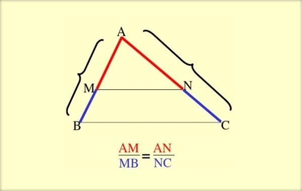 Segmente, Paralele, Teorema lui Thales, Linia mijlocie în triunghi