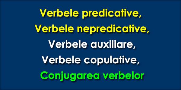verbele-predicative-nepredicative-auxiliare-copulative-conjugarea-verbelor