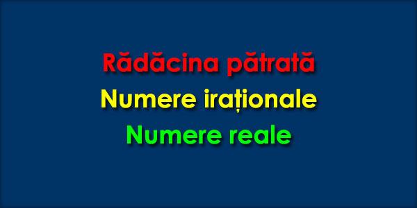 Radacina patrata Numere iraţionale Numere reale