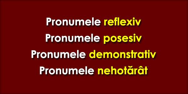 Pronumele reflexiv, Pronumele posesiv, Pronumele demonstrativ, Pronumele nehotărât