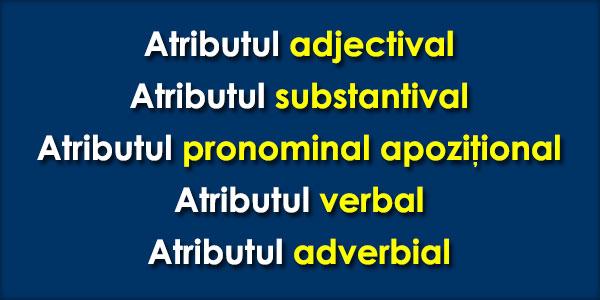 Atributul-adjectival-substantival-pronomnal-verbal-adverbial