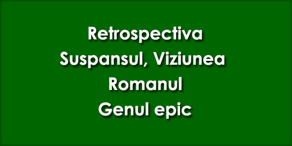 Retrospectiva, Suspansul, Viziunea, Romanul, Genul epic